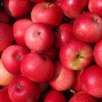 Oktober: Æbler og kartofler