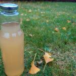 Æblesaft med citron og ingefær