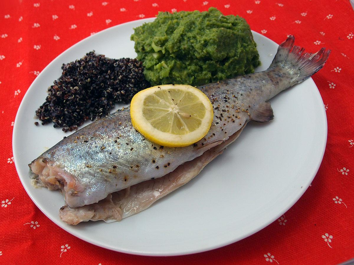 ovnbagte foreller, foreller, æblejuice, fisk, timian, citroner, quinoa, broccoli, græsk yoghurt