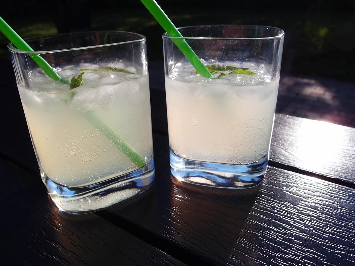 ouzodrink, græsk, drink, ouzo, limoncello, danskvand