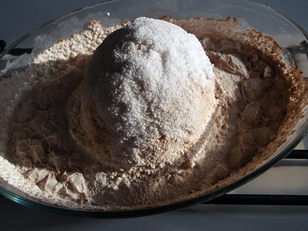 saltbagt selleri, saltbagt knoldselleri, knoldselleri, salt, groft salt, saltbagning