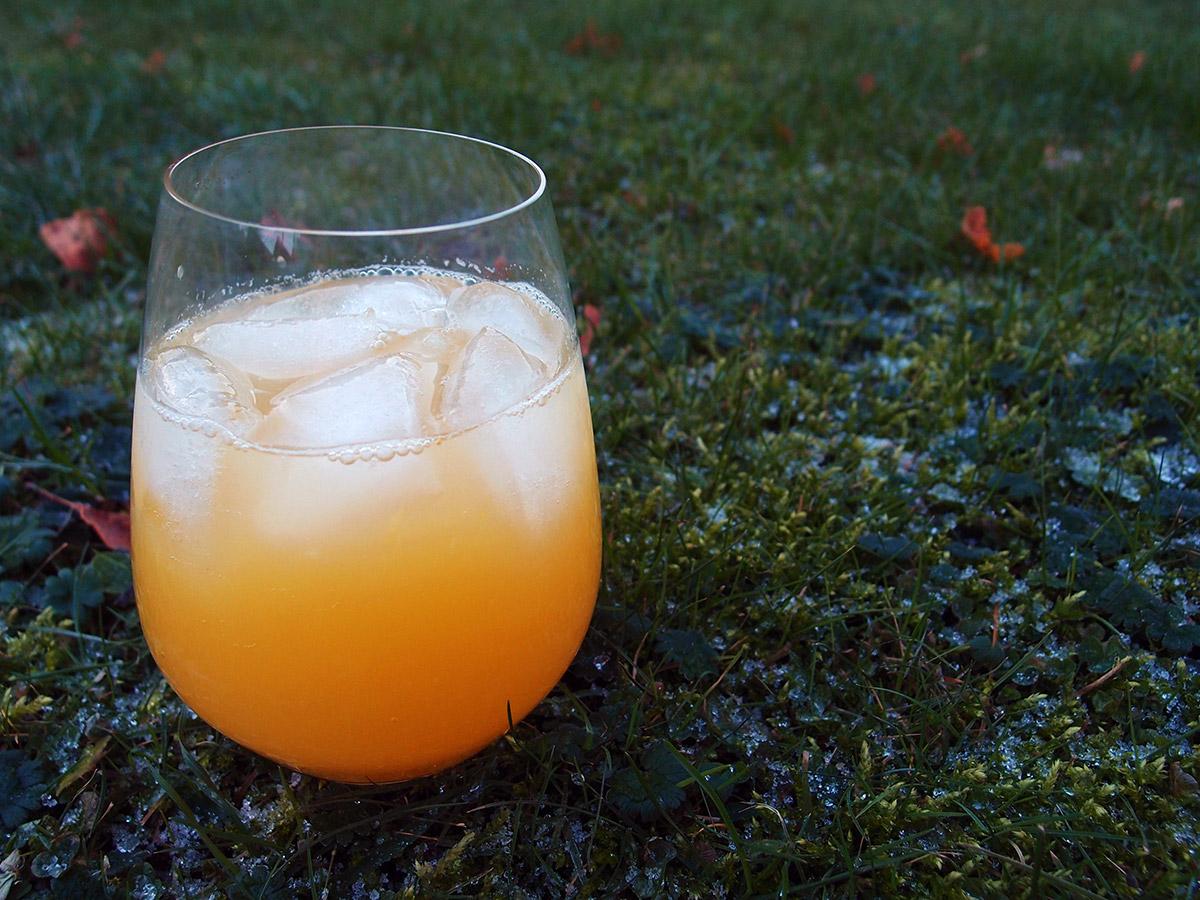 Lækker citrusdrik