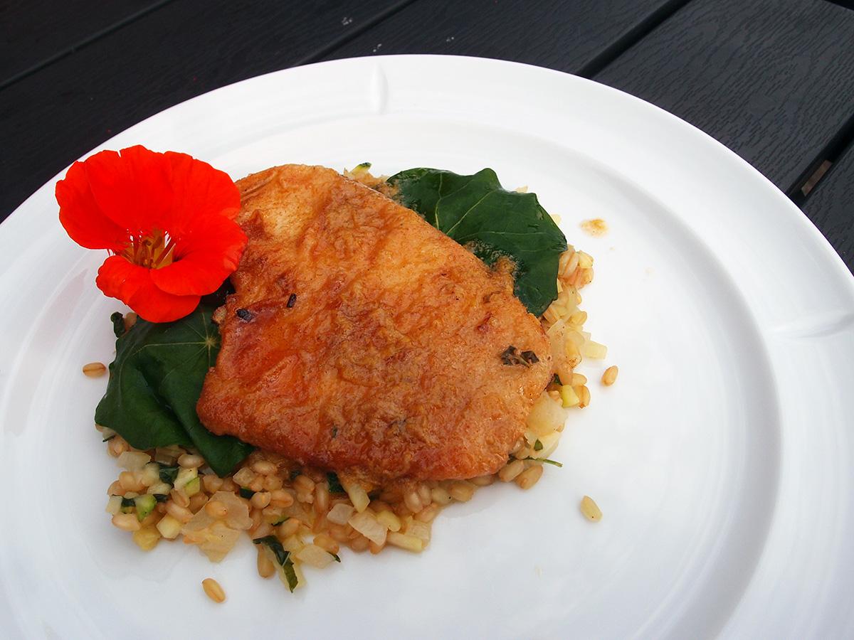 stegt fisk med tallerkensmækkere, spelt, citroner, smør, squash