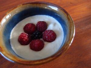 hjemmelavet yoghurt, sødmælk, fløde, morgenmad, brunch