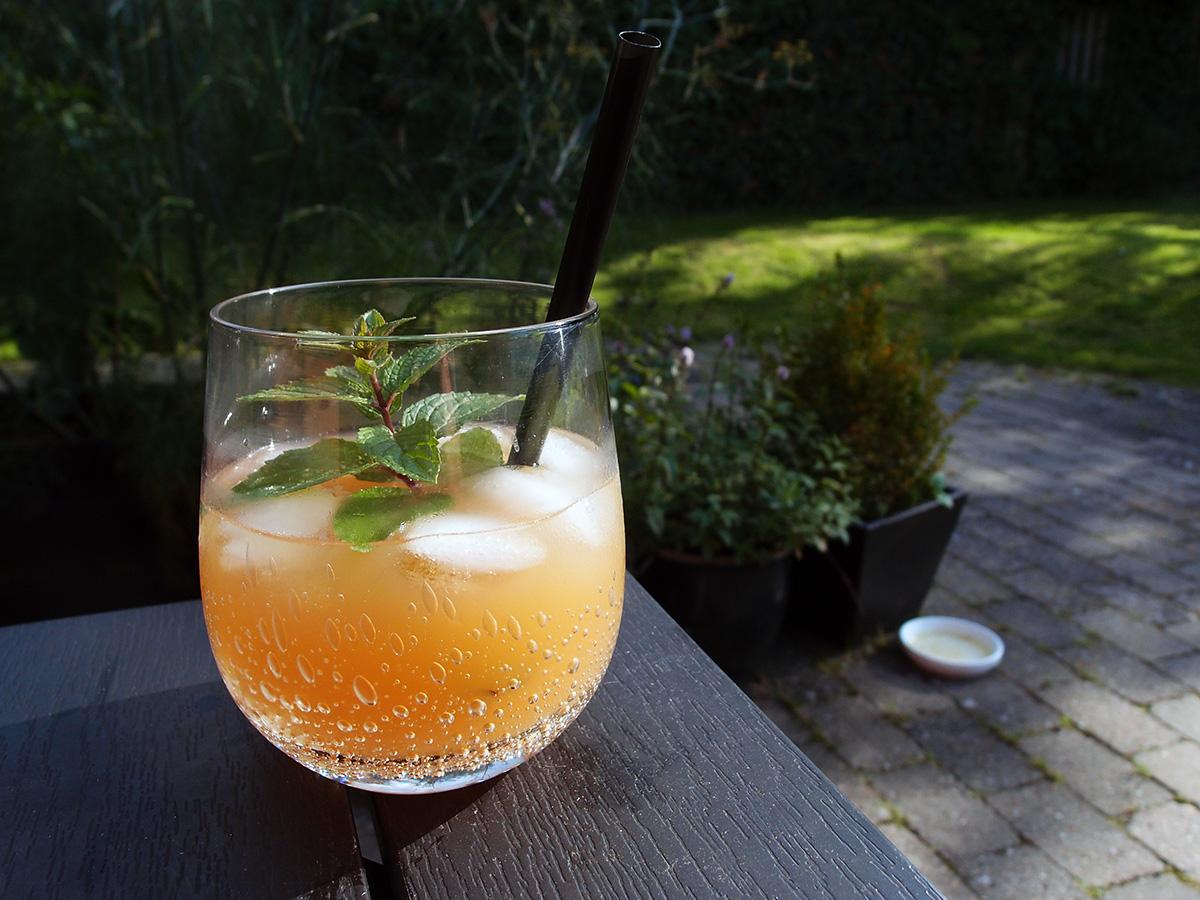 Is-te med appelsin og mynte