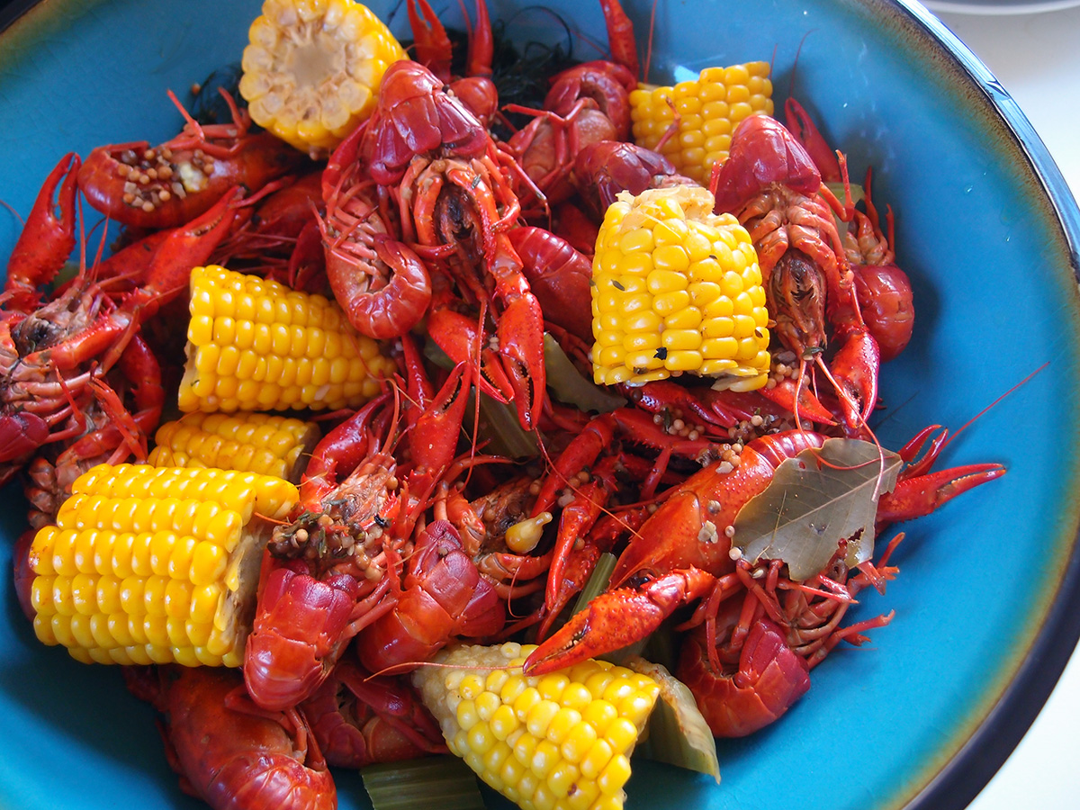 peber, koriander, nelliker, cayennepeber, paprika, hvidløgssalt, løgpulver, oregano, timian, sennepsfrø, dild, bronzefennikel, krebs, skaldyr, majs