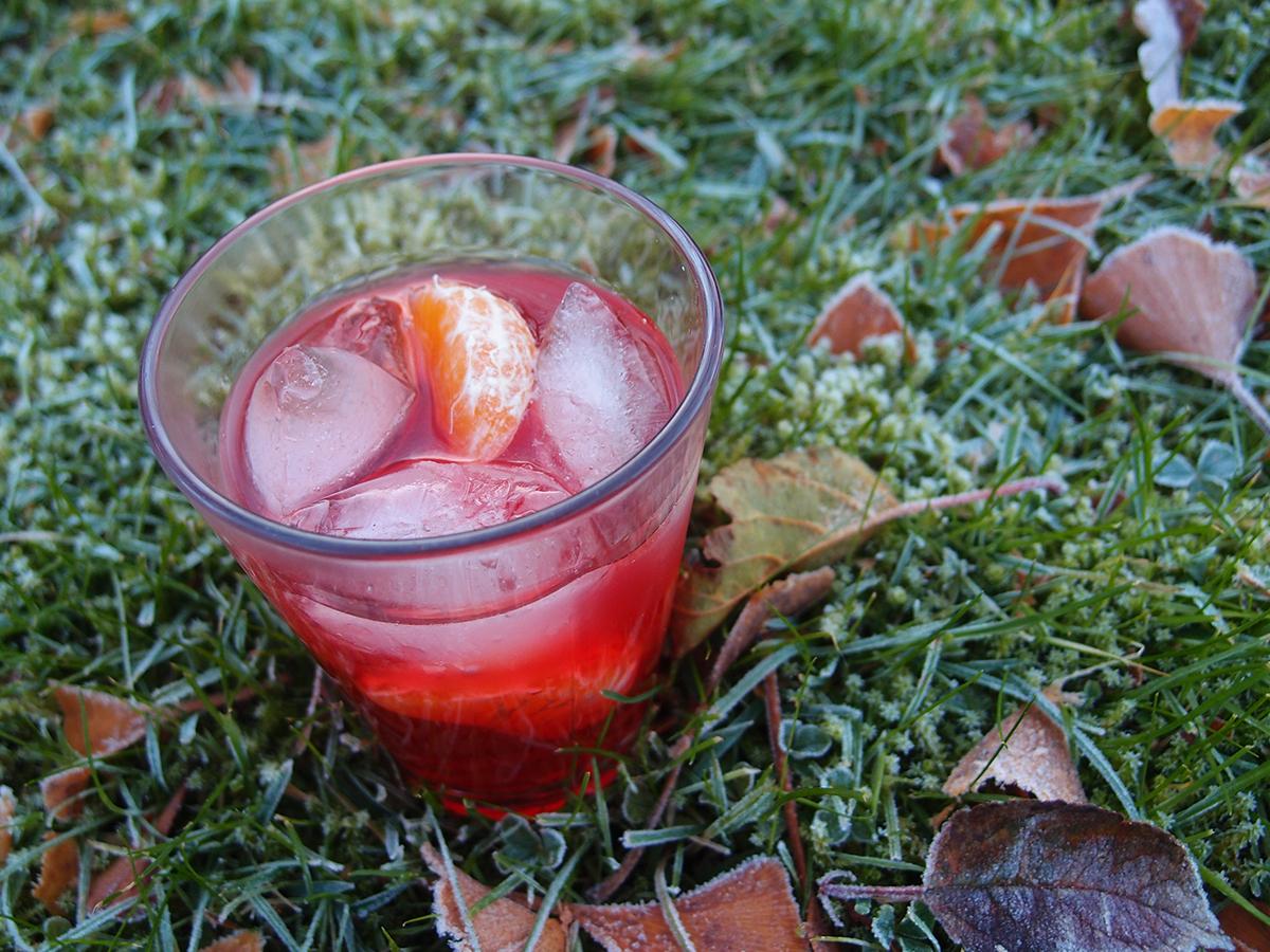 julet tranebærsdrink, tranebærjuice, Aperol, limoncelli, klementiner