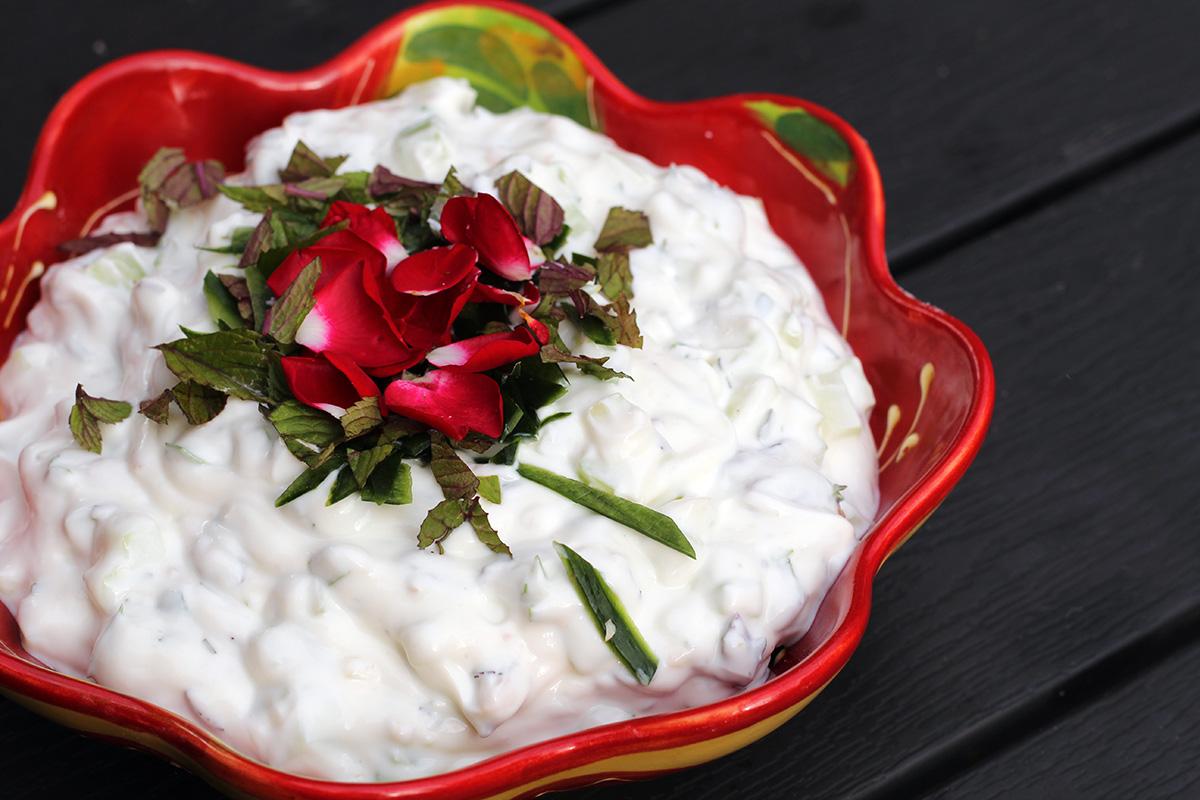 yoghurtcreme, iransk, mellemøsten, græsk yoghurt, agurk, mynte, rosiner, oregano, estragon, timian, hvidløg, valnødder