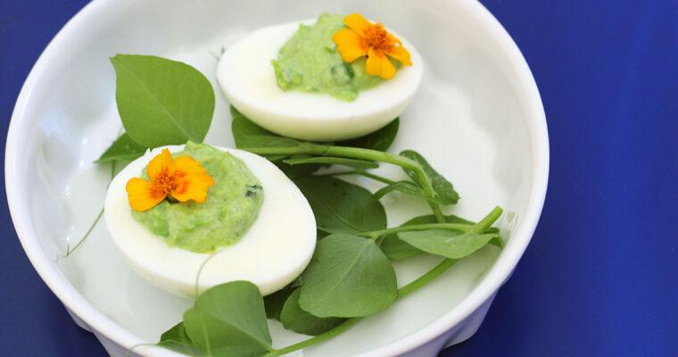 Ærte-æg