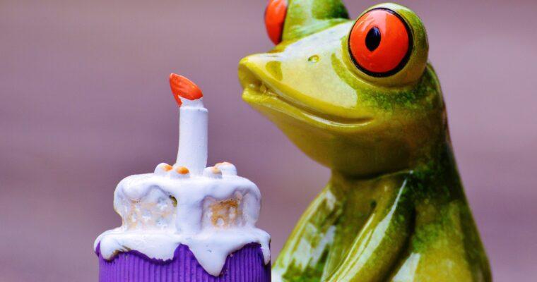 Blogfødselsdag