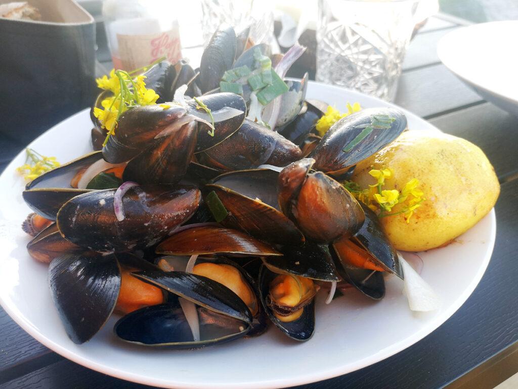 restaurant værftet på samsø, restaurantanmeldelse, madanmeldelse, restauranter på Samsø